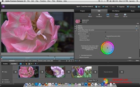 Ekraanipilt Adobe Premiere Elements Windows 10